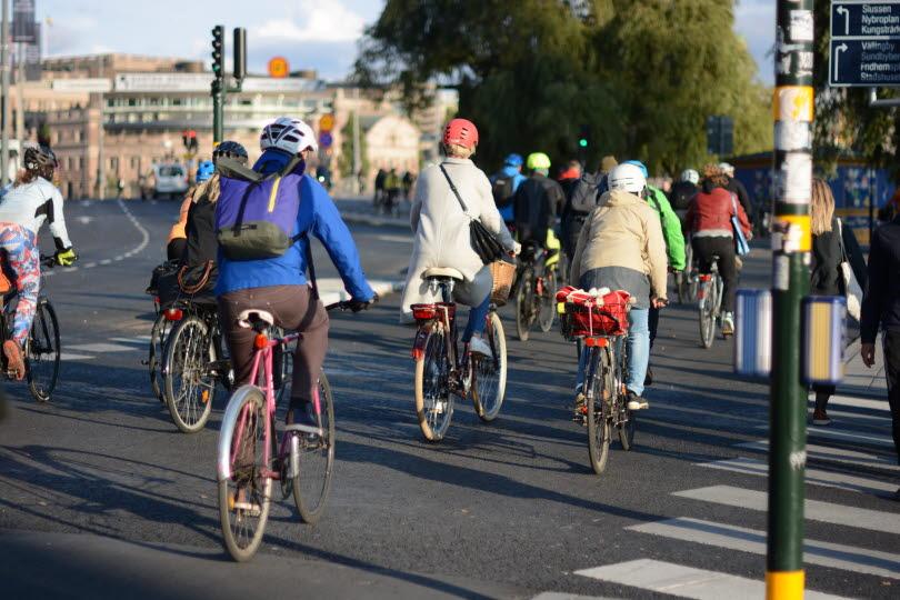 Cyklister på en trafikerad cykelbana.