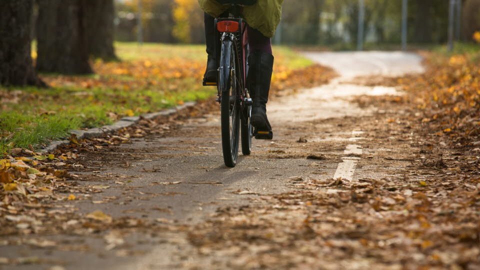 Cykel på en cykelväg.